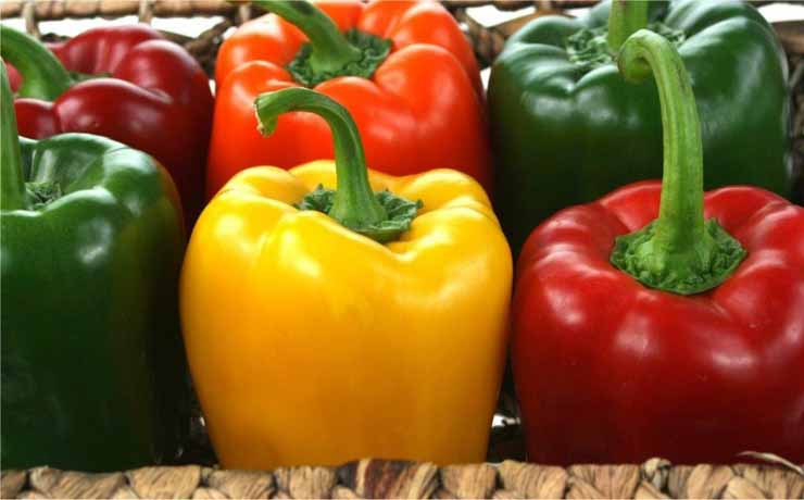 sweet-bell-peppers