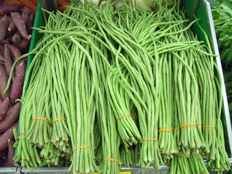 yardlong-beans